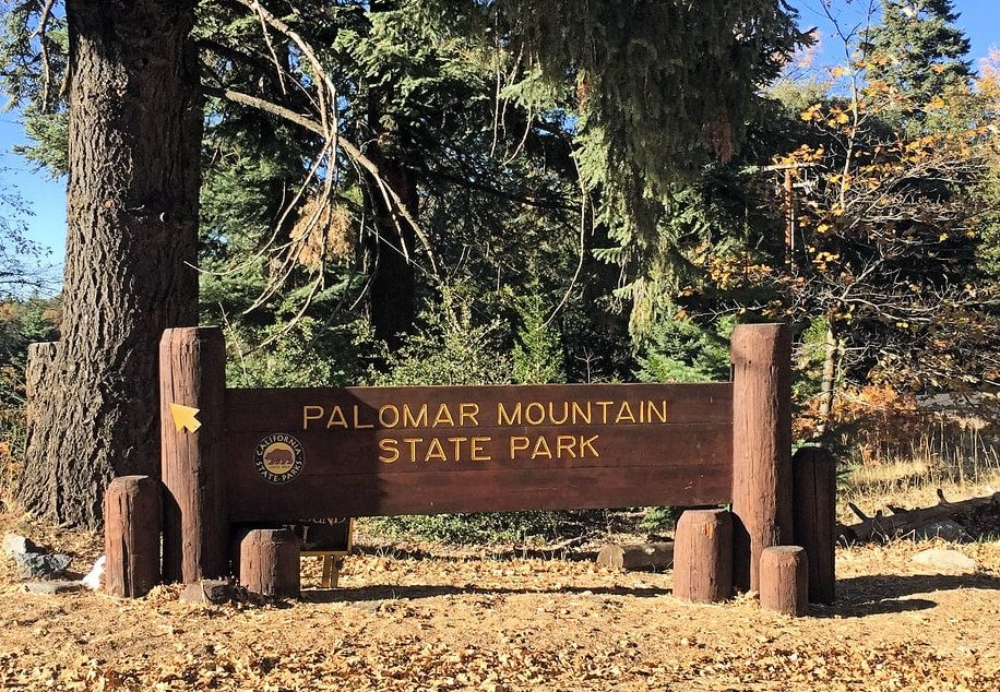 Palomar Mountain Camping Guide