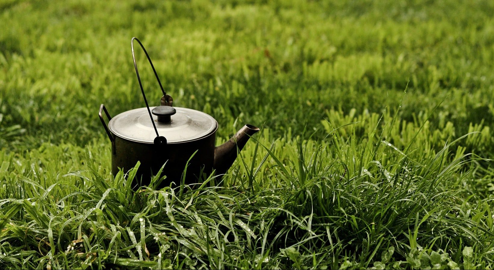 How to use camping kettle