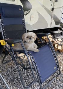 Best Seat at the Campsite